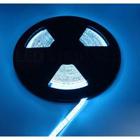 LED Strip RGBW Ultra 10 Meter 84 LED 24 Volt