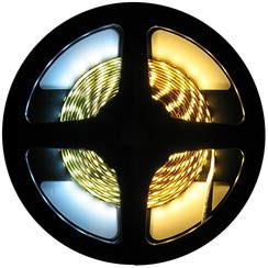 LED Strip Dual White 5 Meter 120 LED 24 Volt