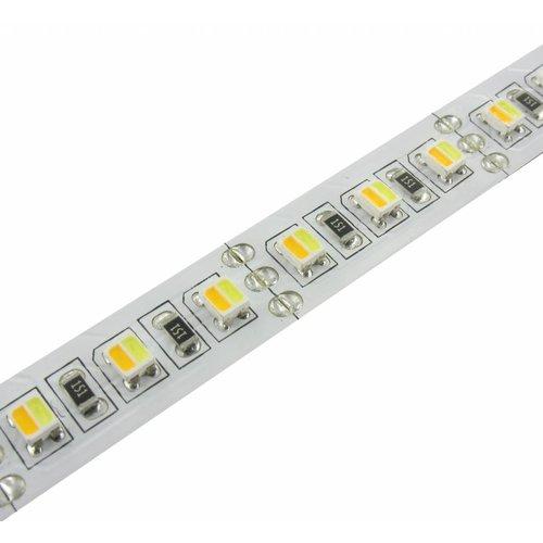 LED Strip Dual White 1 Meter 120 LED per meter 24 Volt