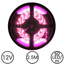 LEDStrip Roze 2,5 Meter 60 LED 12 Volt