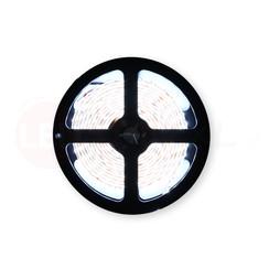 LED Strip Koud Wit 2.5 Meter 120 LED 12 Volt - Ultra