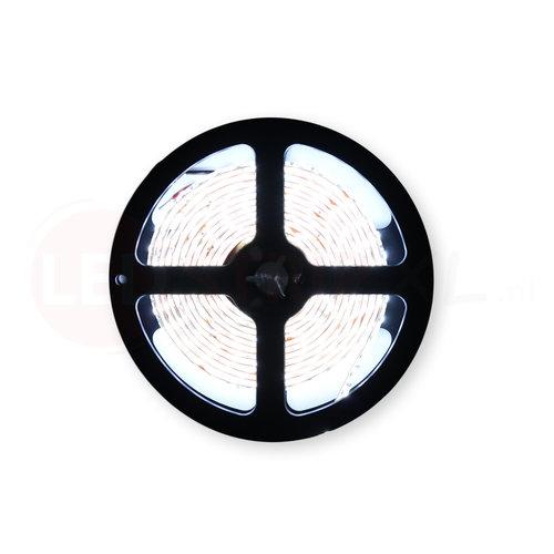 LED Strip Koud Wit 2.5 Meter 120 LED per meter 12 Volt - Ultra