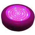 Dolphix LED kweeklamp UFO 90 Watt