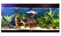 Aquarium LED verlichting Strips
