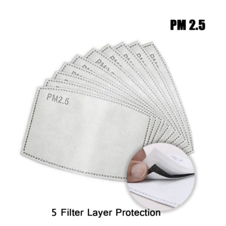DG 10 Pcs PM2.5 5-layer Protective Filter Adult Child Mask