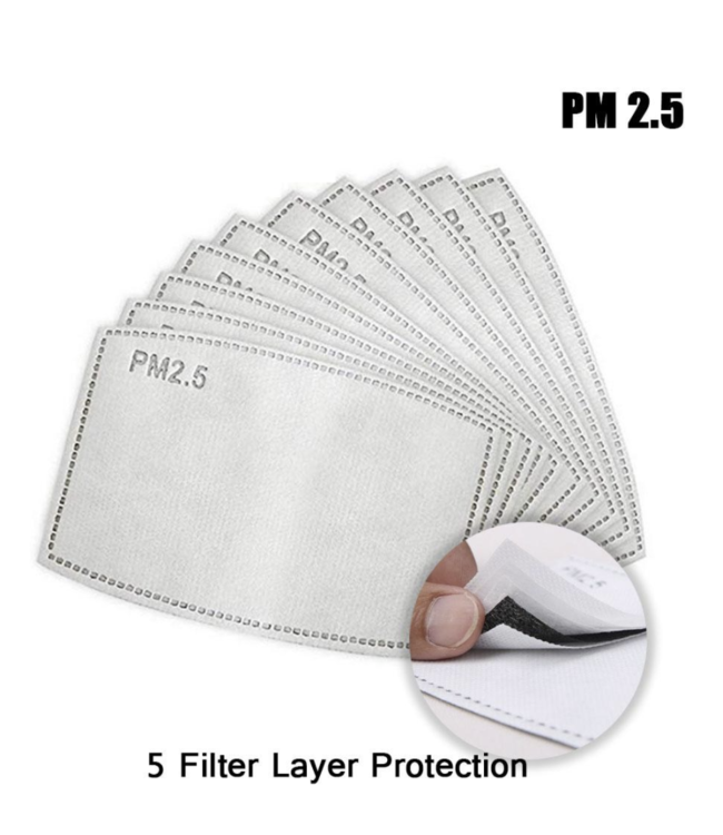 DG 10 pieces PM2.5 5-layer Protective Filter Adult Child Mask