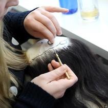 17 /01/'22 Vakles Haarknopen/Implanteren Basic