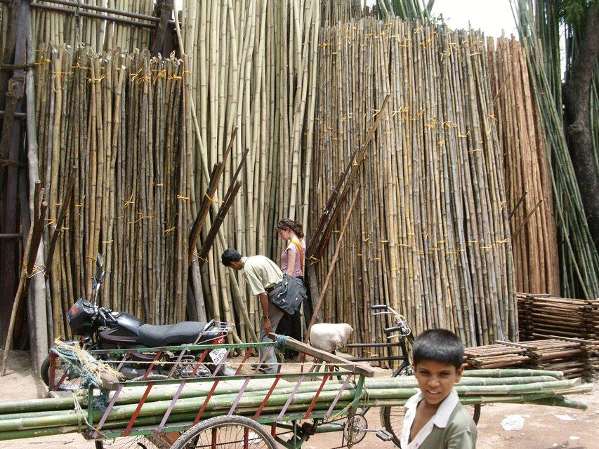 Wereld Bamboe dag, laat je inspireren door de mogelijkheden van Bamboe.