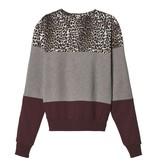 10Days Light Grey Melee Leopard Panel Sweater 20.807.9103/9