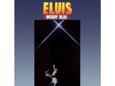 FTD - Moody Blue