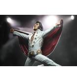 Elvis On Tour Action Figurine