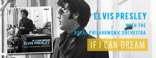 header_beneden_R_elvis