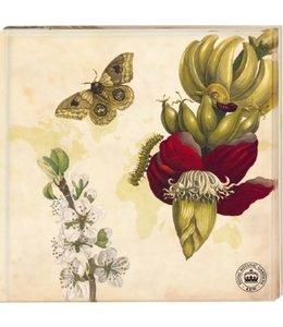 "Glasuntersetzer Vintage Glasuntersetzer ""Schmetterling"" 2er-Set"
