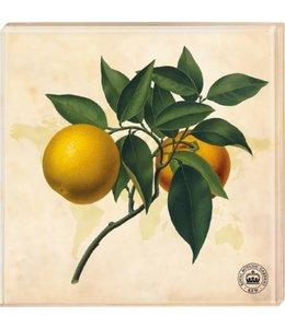 "Glasuntersetzer Vintage Glasuntersetzer ""Orangen"" 2er-Set"