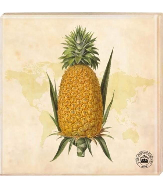 "Glasuntersetzer ""Ananas"", 2er-Set"