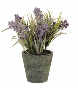 Blumentöpfe Vintage Blumentopf mit Lavendel - 2er Set