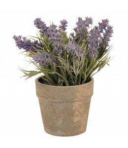 Blumentöpfe Vintage Blumentopf mit Lavendel