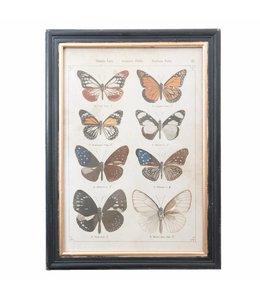 """Wandbild Vintage """"Schmetterlinge"""" 40x55"""