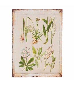 Schilder Vintage Dekoschild Pflanzen