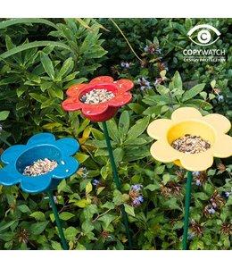 Gänseblümchen zum Vögel füttern (3 Farben)