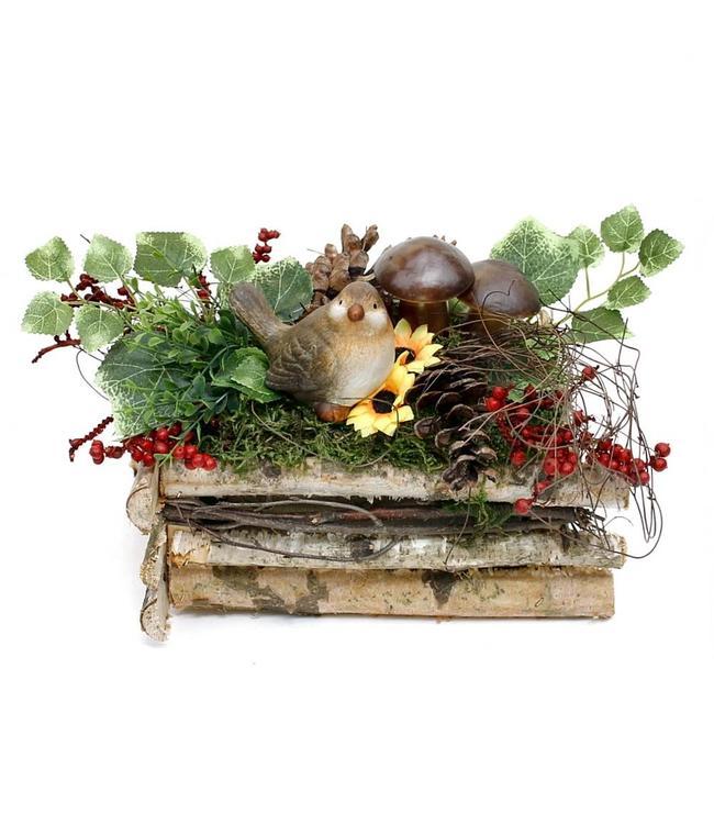 Birkenkiste mit Vogel und Pilzen