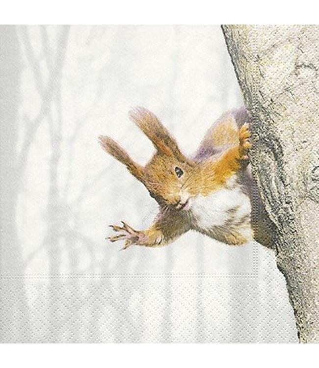 Servietten Eichhörnchen im Winterwald