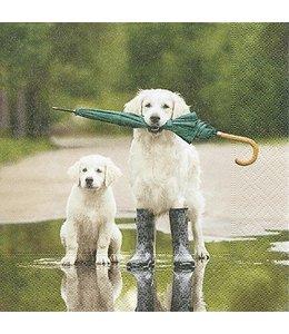 Servietten Hunde im Regen