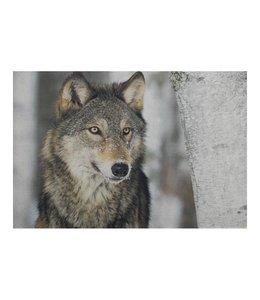 Fußmatten Vintage Türmatte Wolf