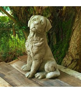 Steinfigur Labrador sitzend