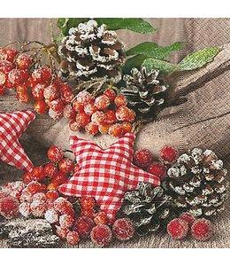 Servietten Vintage Servietten Natürliche Weihnachtsdekoration