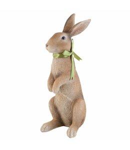 Kaninchen mit Schleife