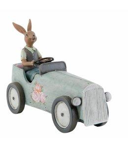 Kaninchen mit Auto