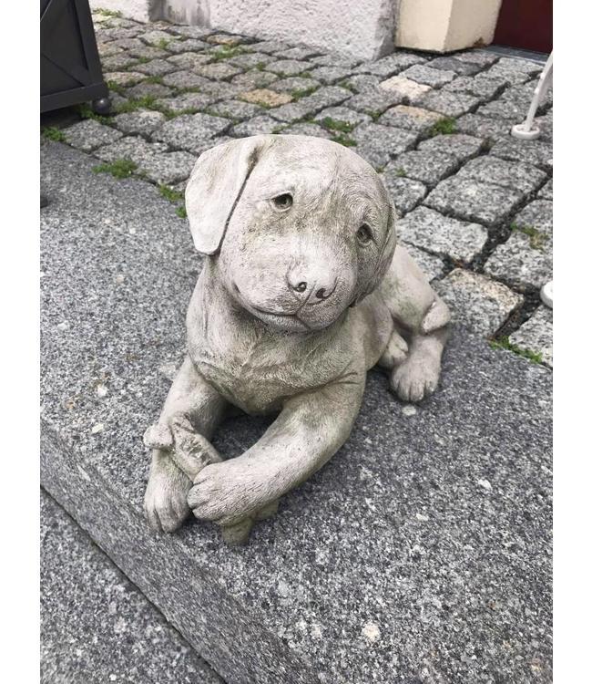 Steinfigur Hundewelpe