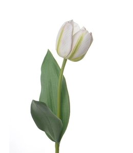 "Kunstblume Tulpe Royal, 48 cm ""Natural Touch"" Beige"