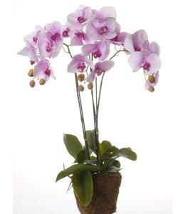 Künstliche Orchidee, lila