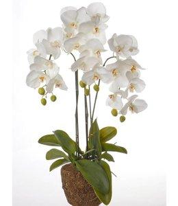 Künstliche Orchidee, weiß