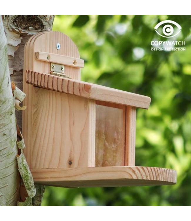 Eichhörnchen Futterstation