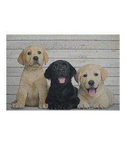 Fußmatten Vintage Fußmatte Labrador Welpen