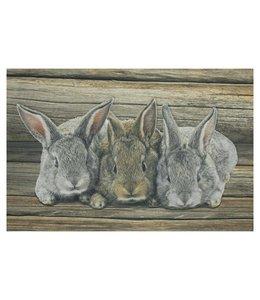Fußmatte Kaninchen