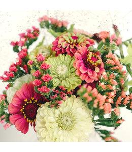 "Jora Dahl Wild Bouquets ""Zinnia Collection"" Samenkollektion"