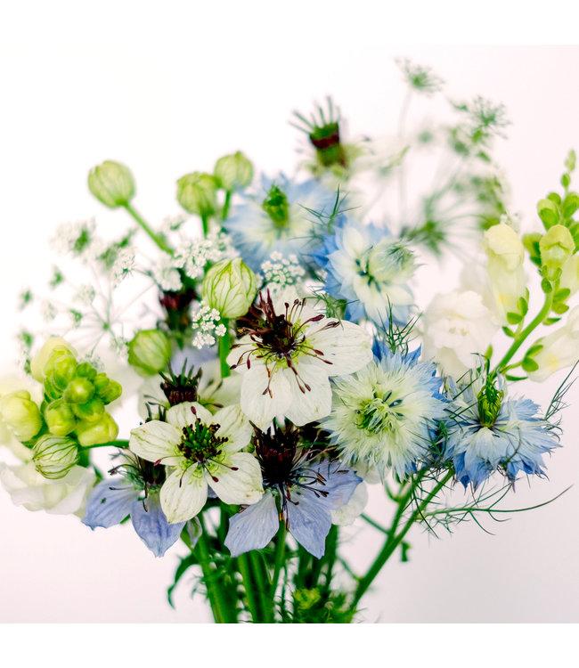 Jora Dahl Wild Bouquets Nigella Collection