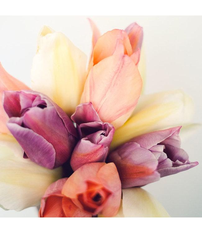 Jora Dahl Tulpenkollektion Vintage Silk