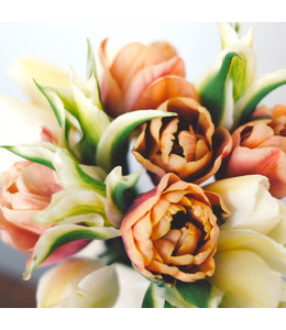 Jora Dahl Tulpenkollektion Grannys Bouquet