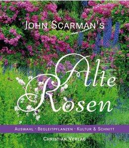 John Scarman's Alte Rosen