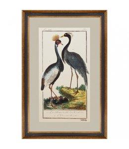 """Bilder Vintage Wandbild """"Kranich & Reiher"""""""