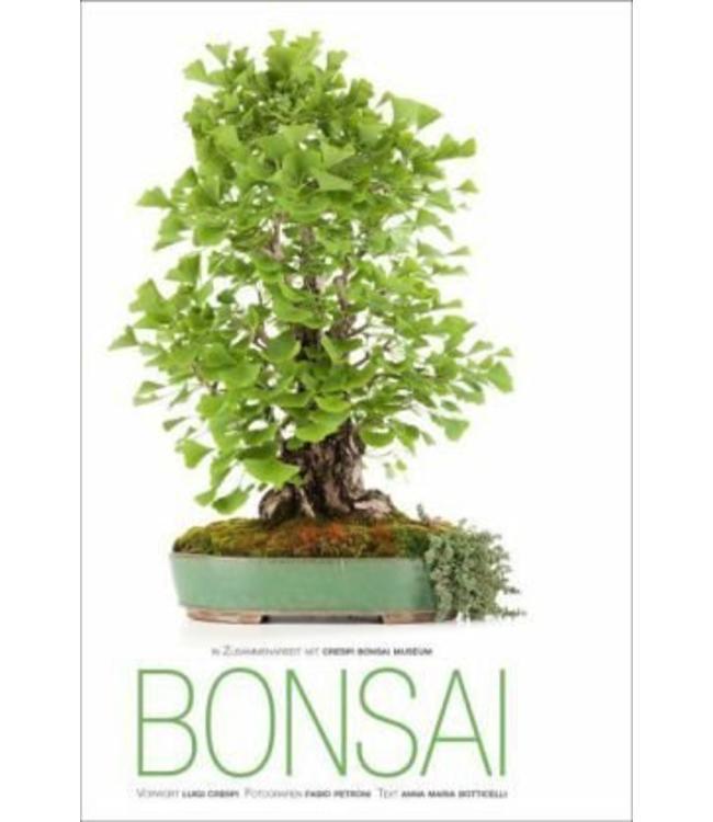"""Buch """"Bonsai"""""""