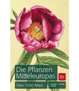 Die Pflanzen Mitteleuropas