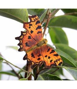 Wildlife Garden 7 Deko-Schmetterlinge handgeschnitzt