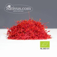 Crocus sativus 2500 bulbi calibro 9/10 - BIO