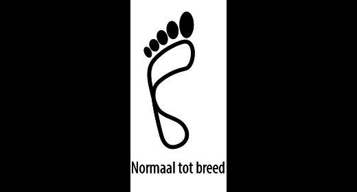 Birkenstock Birkenstock Gizeh leer mermaid crème  normaal voor normale voet